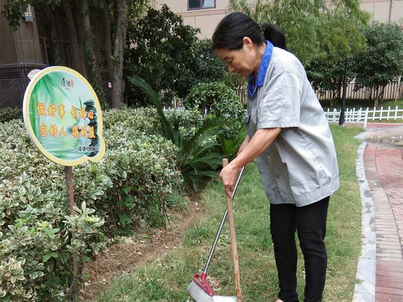 淮安物业公司对小区绿化的管理标准